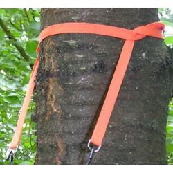 Napier Apex Tree Hugger